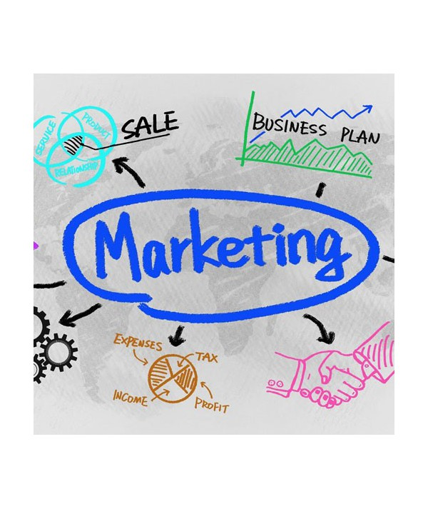 Marketing (CON TUTOR)